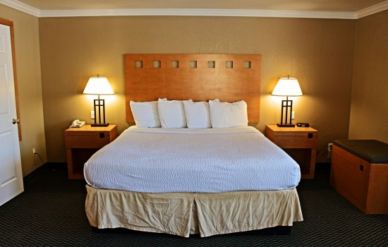 Lake Point Lodge - ADA King - Bed View